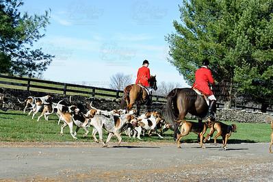Snickersville Hounds  11-25-2011
