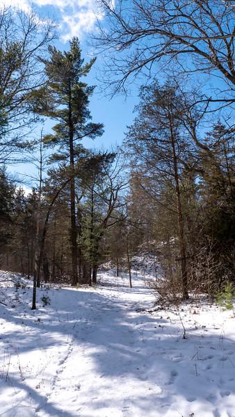 Ontario-Grand-Bend-Pinery-Provincial-Park-42.jpg