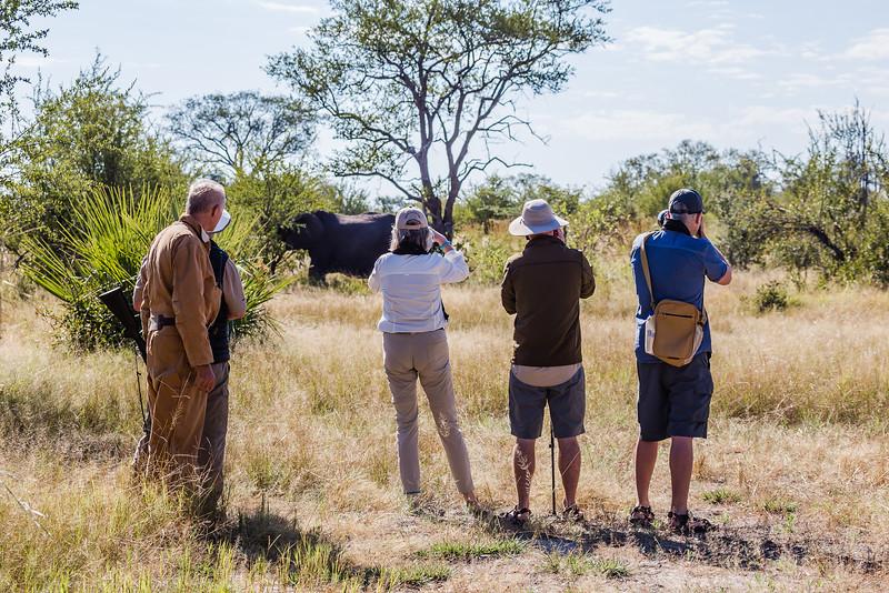 Walking safari group in Africa - Best Safari Shirt