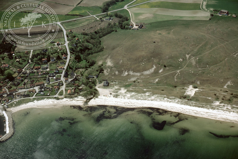 Vitemölla, coastline north of (1985). | LH.0003