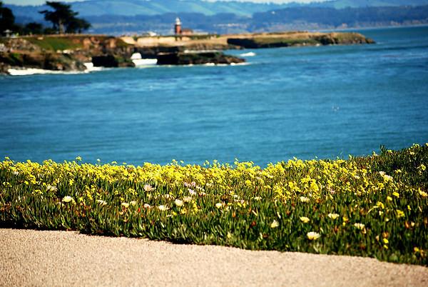 03-13-10 SF-Carmel