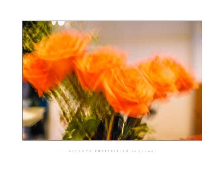 Donipati 3 - Flowers.jpg