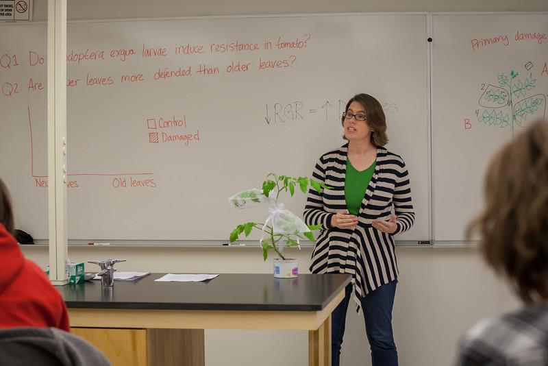Alyssa Hakes Classroom-19.jpg