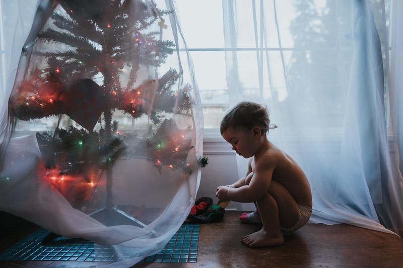 ChristmasShoreline-52.jpg