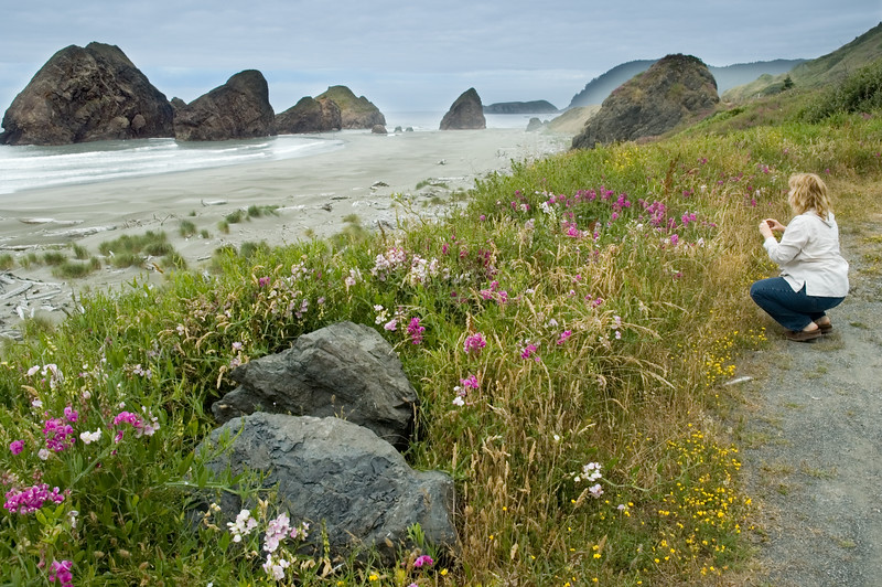 A nice photo of Eileen composing her photo of the wildflowers, beach, ocean and giant boulders. Beautiful location at Cape Sebastian, OR.<br /> ND70_2006-07-11DSC_4447-ORCoastEileenTakingPhotoWide-nice-3 copy.jpg