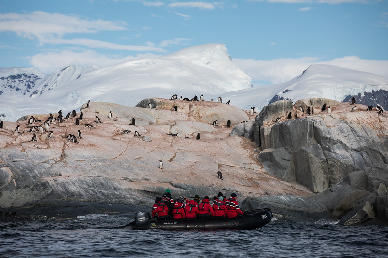 _MG_7529_20170122_Antarctica.jpg