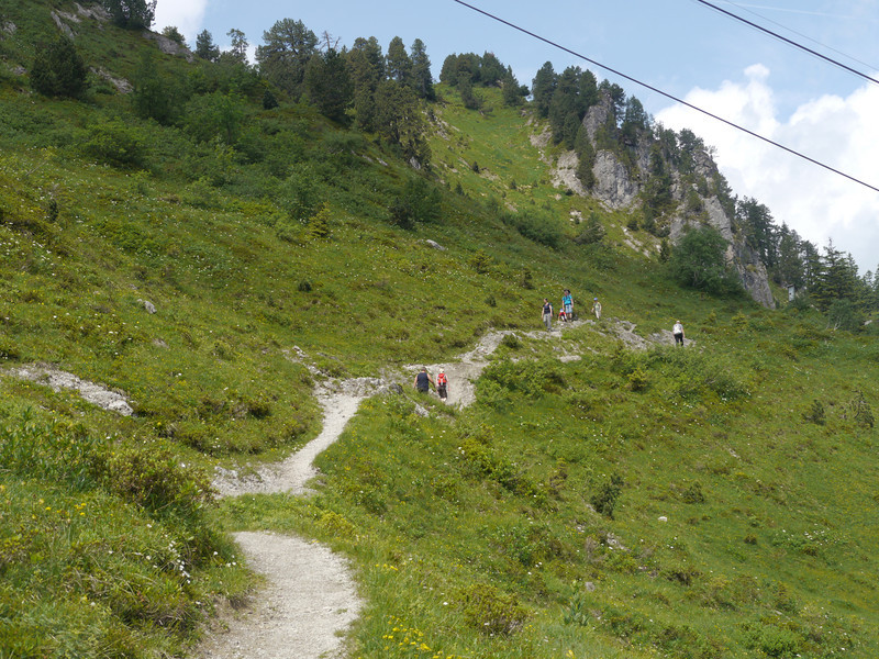@RobAng 2013 / Bergspaziergang Hochybrig, Ibergeregg, Oberiberg, Kanton Schwyz, CHE, Schweiz, 1533 m ü/M, 2013/07/07 11:45:40