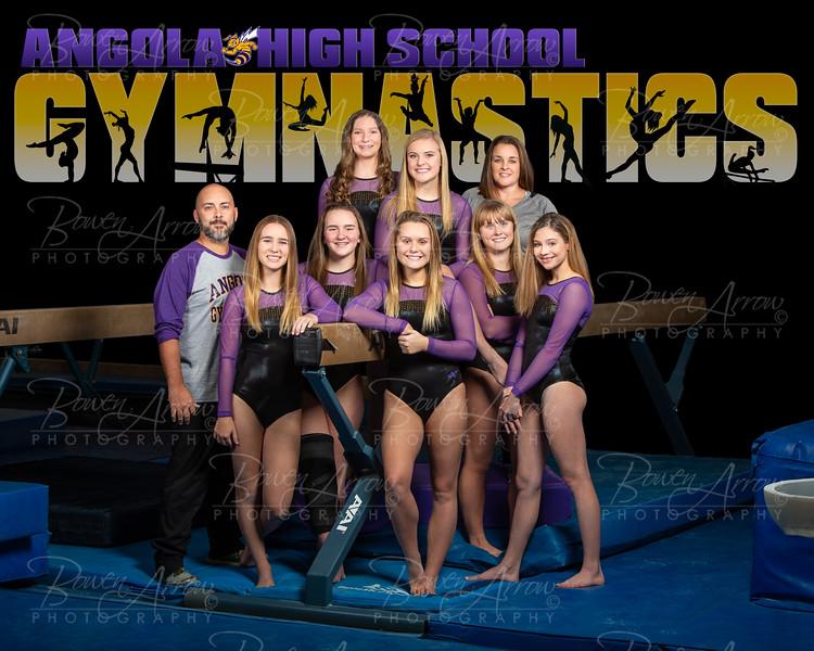 2019 Gymnastics Team
