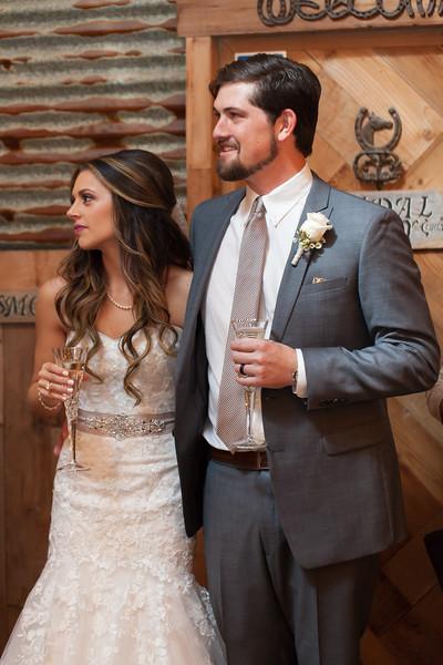 Houton wedding photography ~ Rachel and Matt-1287-2.jpg
