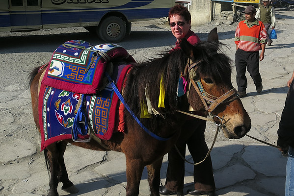 Mustang and the Tiji festival 2014