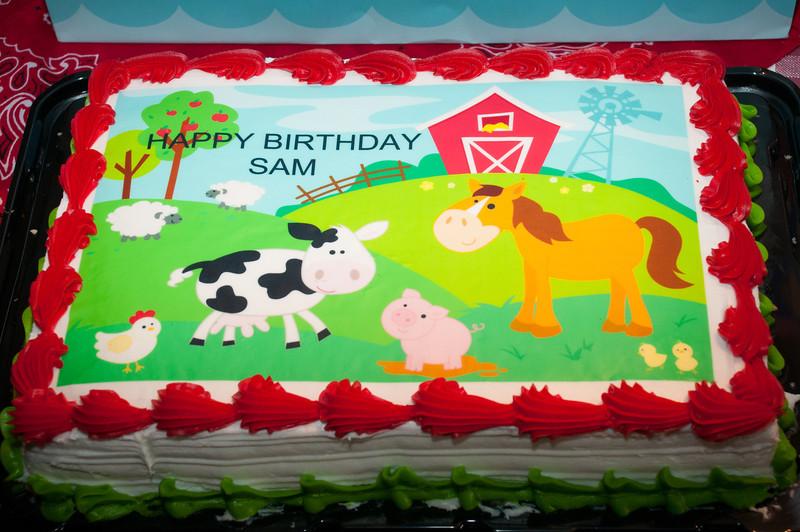 Sam's 2nd Birthday Party