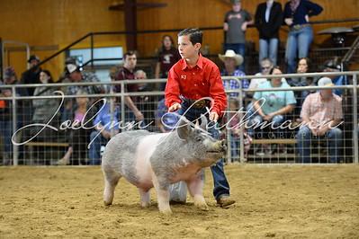 Hog Show