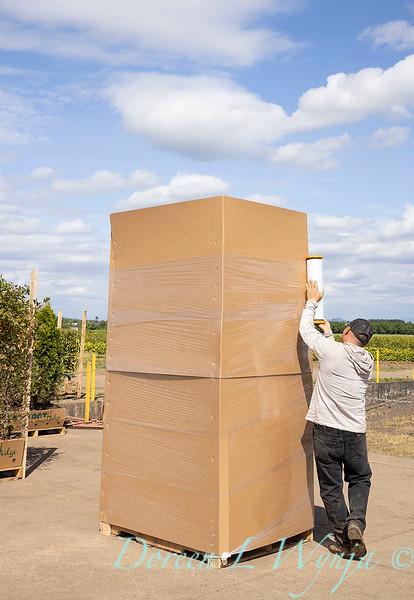 Readying for shipment_5561.jpg