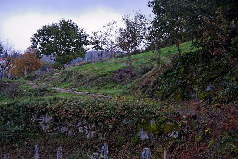 PR6 trilho medieval - 20091122 -  9032.jpg