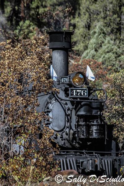 Durango Silverton NGRR