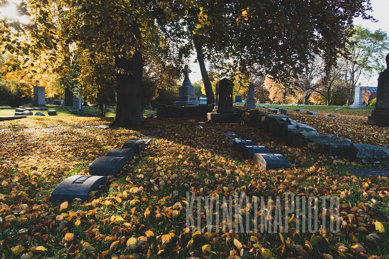 Graceland110218-224.jpg