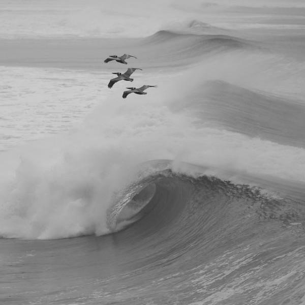 SURFIN' THERMALS