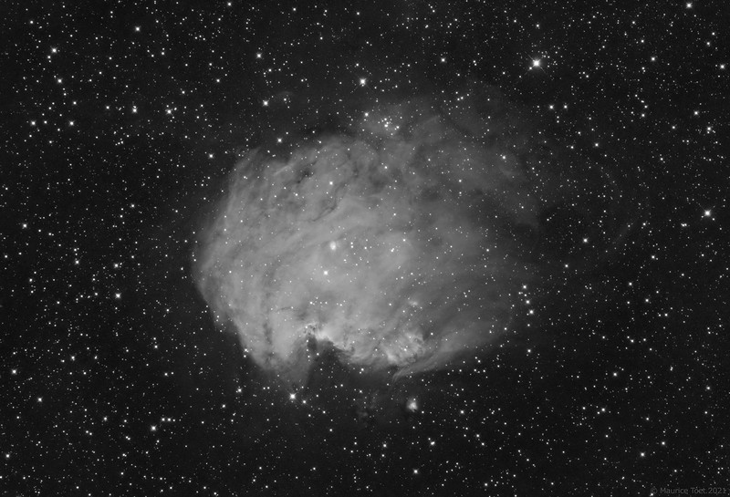 Sh2-252, Monkey Head Nebula