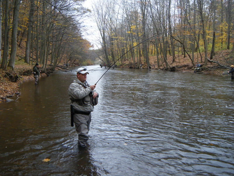 Oak Orchard River - New York - Lake Ontario Trib - Fish On!