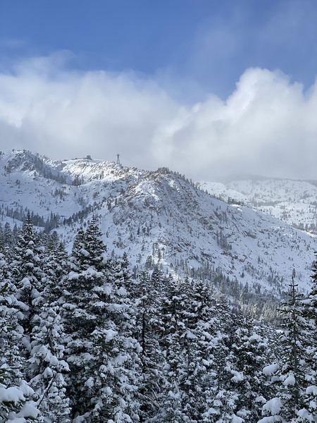 Snow covered trees and view of Granite Peak at Squaw Valley, California