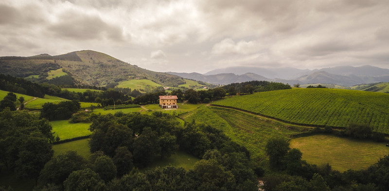 Green hill Basque Country.jpg
