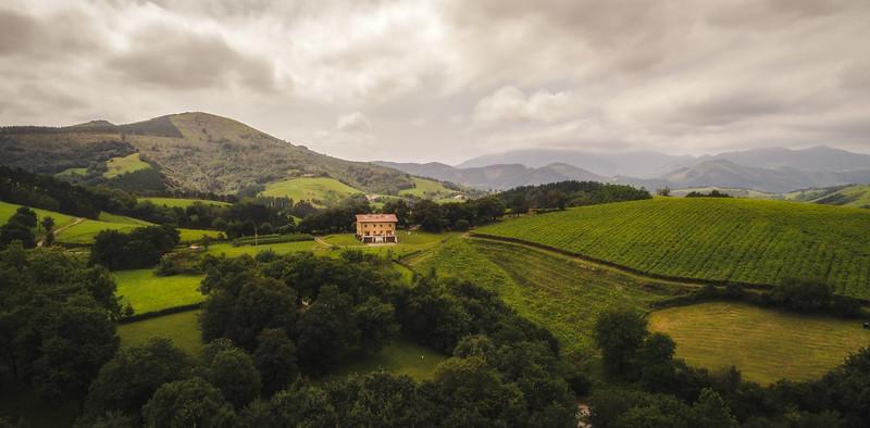 Green hill Basque Country.jpg