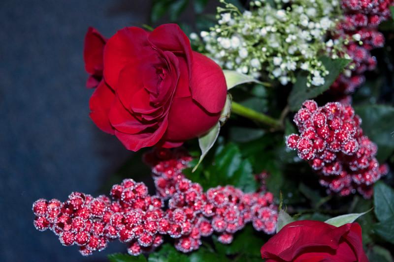 ValentinesDayRoses5.jpg