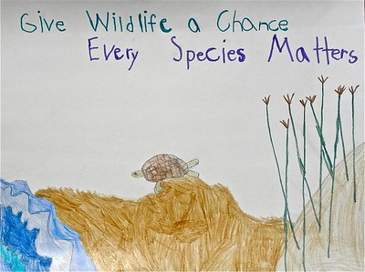 2016 Give Wildlife a Chance Poster Contest