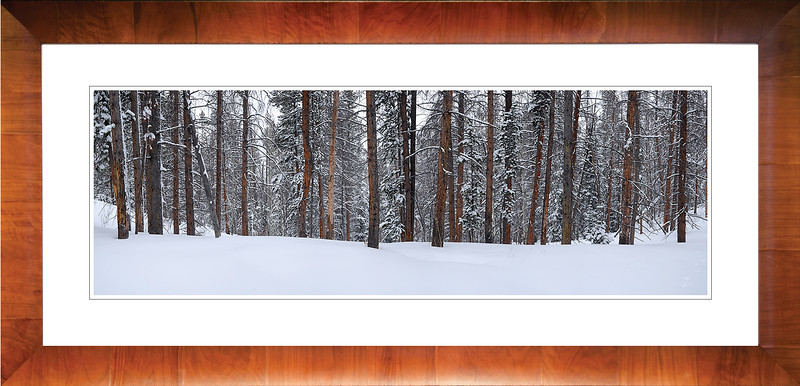 Winter Wonderland Framed