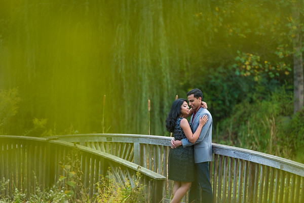 Engagement at Meadowlark Botanical Garden  |  Nilima & Neil