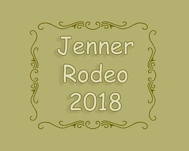 Jenner 2018