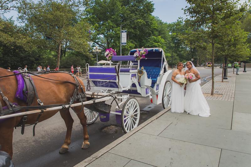 Central Park Wedding - Maya & Samata (23).jpg