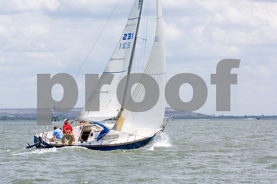 """True Blue""- Sail #231"