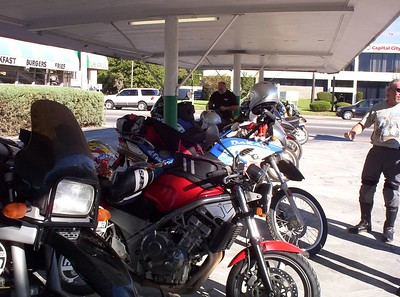 Ocala National Forest Dysfunctional Ride