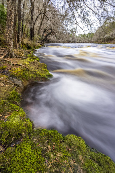 Suwannee River rapids at Big Shoals State Park