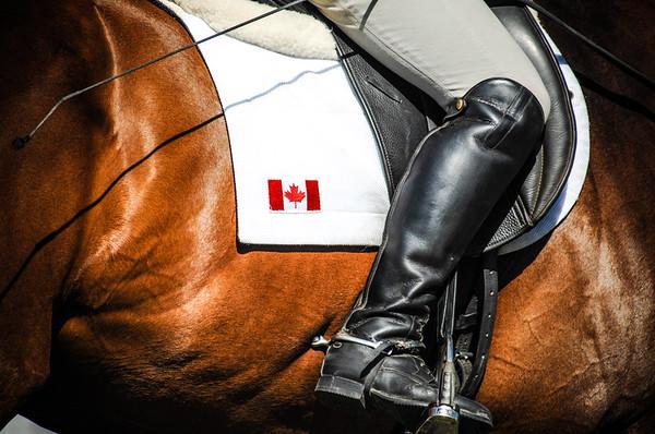 Rebecca Farms Equestrian Event 2013