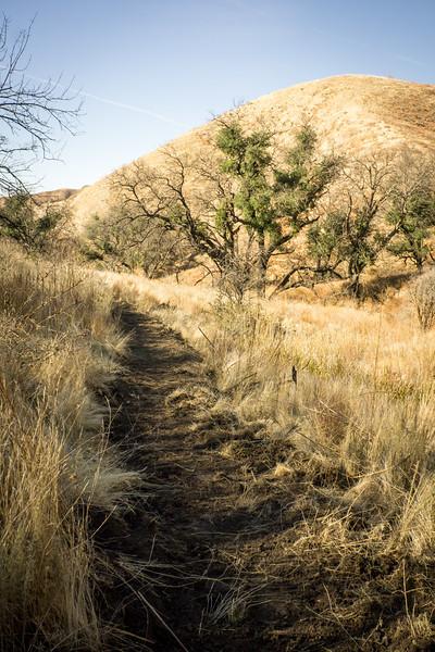 20181201018-Golden Valley Trailwork.jpg