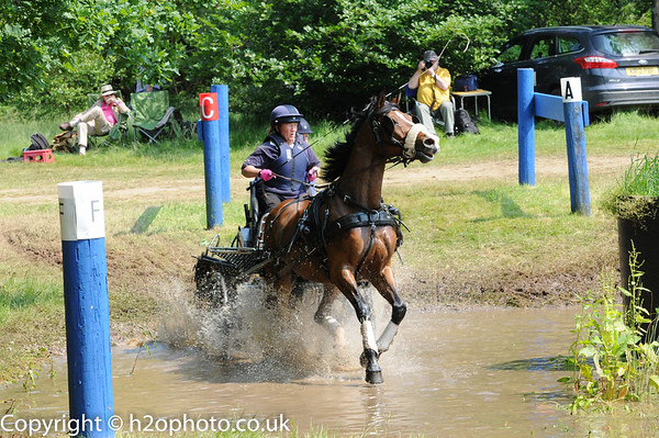 WPEC - Carriage Driving (Favourites)