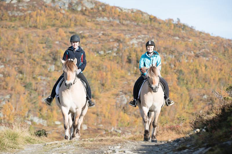 2015-10-14_Liaset_Hestelinja_PhotoBenjaminHjort-9286.jpg