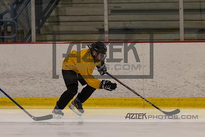 Hockey Clinic 8/28/20