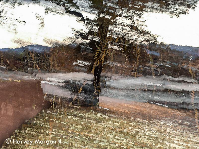 Falling_Leaves_Pojoaque,NM-001.jpg