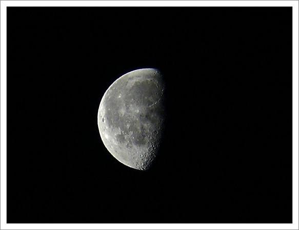 mesic02.jpg