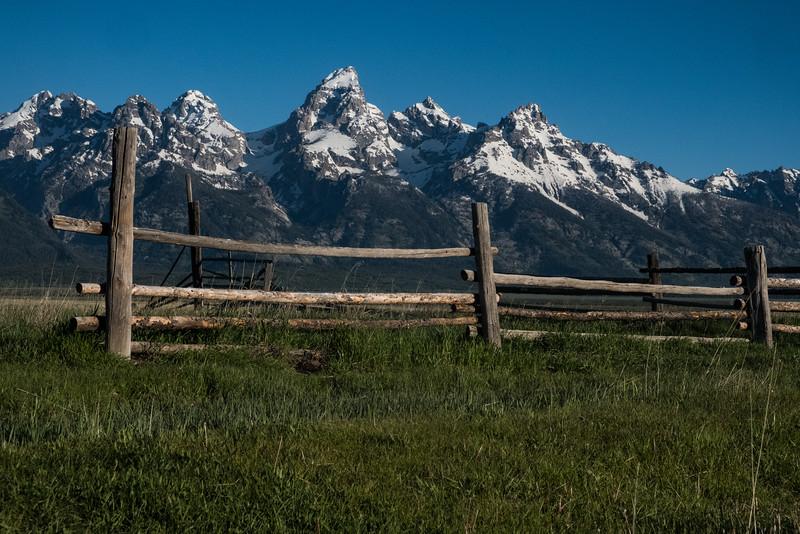 Mormon Row Fence