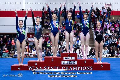 HS Sports - Wi State Ind Gymnastics Tournament [d] March 03, 2018