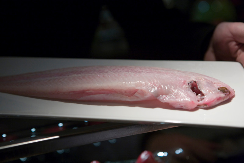 This is a raw dover sole.  The waiter brought one out for me so that  I could take a look at it.