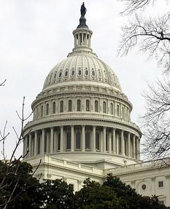 Washington DC 2014, 2017
