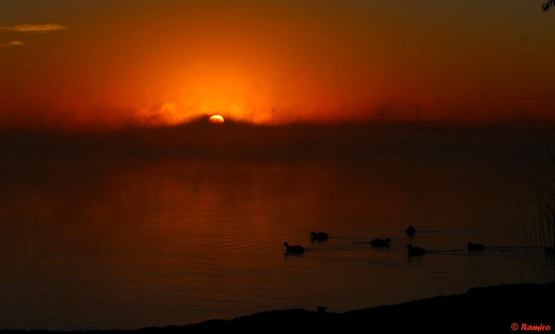 Sunrise Braunig Lake IMG_7904.jpg