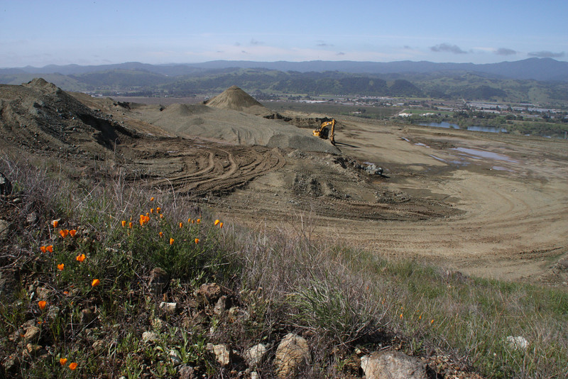 All the beautiful views, and then we're reminded behind certain ridges, behind the poppies, that we're still in a landfill.