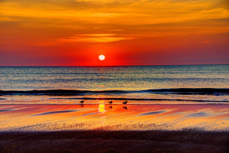 Sunrise-corolla-June13b-Beechnut-Photos-rjduff.jpg