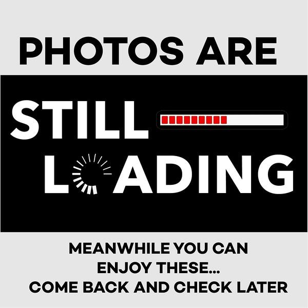 za LOADING - Copy.jpg